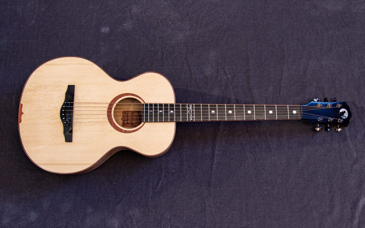 SEL Small Acoustic guitar